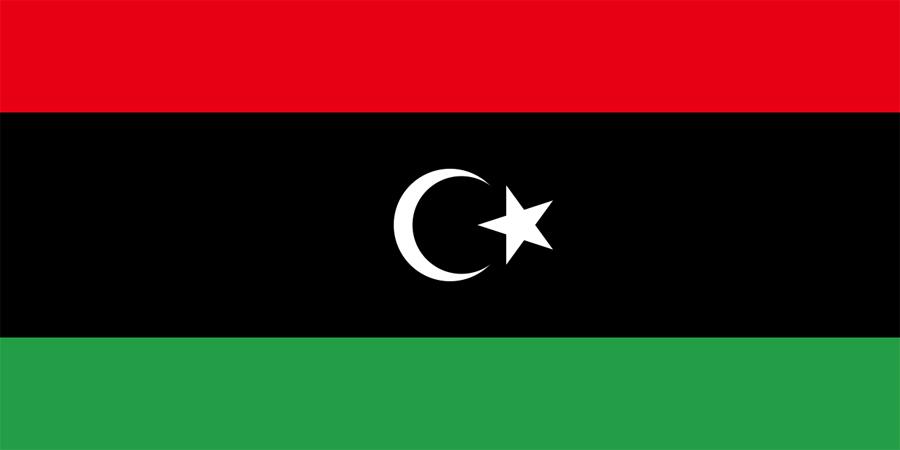 लिबियाबाट २०० अवैध आप्रवासी फिर्ता