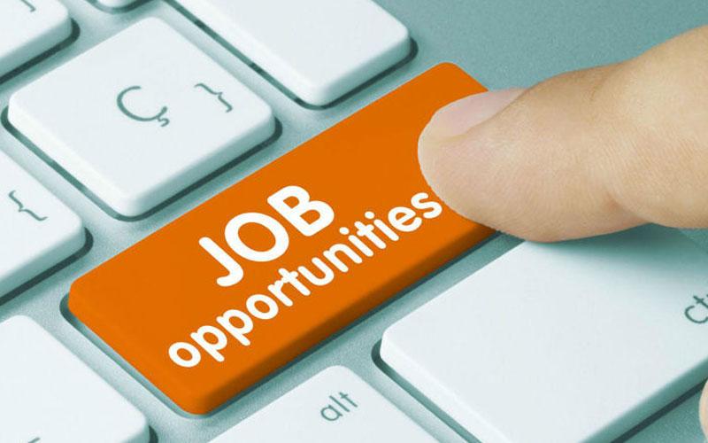 रोजगारीको अवसर, दिनुहोस् आवेदन