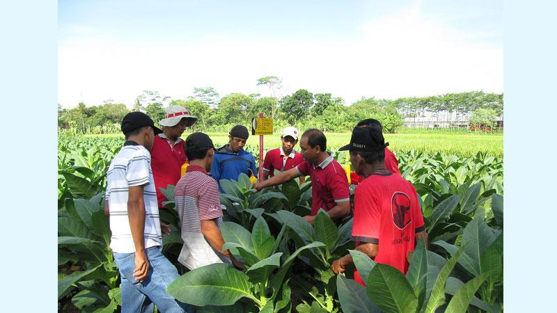 युवा कृषकहरुको लागि सुनौलो अवसर, फारम भरिहाल्नुस