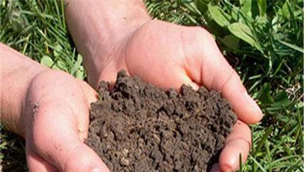 माटो जाँचले बढायो कृषिजन्य वस्तुको उत्पादन