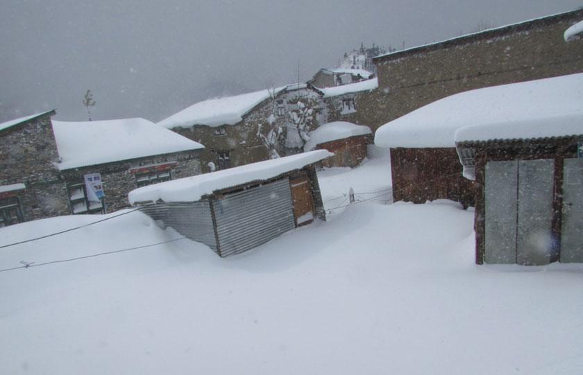 हिउँ नपर्दा हिमाली जिल्लाका किसान चिन्तामा