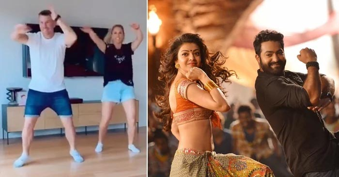 WATCH: David Warner dances on 'Pakka Local' song to wish Jr NTR on his birthday