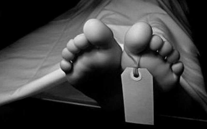 सिन्धुपाल्चोकमा भरुवा बन्दुक पड्किँदा बालकको मृत्यु