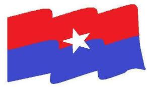 फेदीखोला गाउँपालीका स्तरिय राष्ट्रिय युवा संघ नेपाल गठन