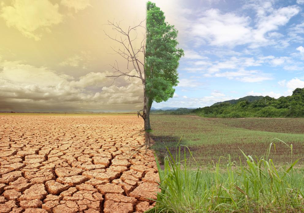 पाँच करोडभन्दा बढी मानिस जलवायु परिवर्तनको प्रकोपबाट प्रभावित