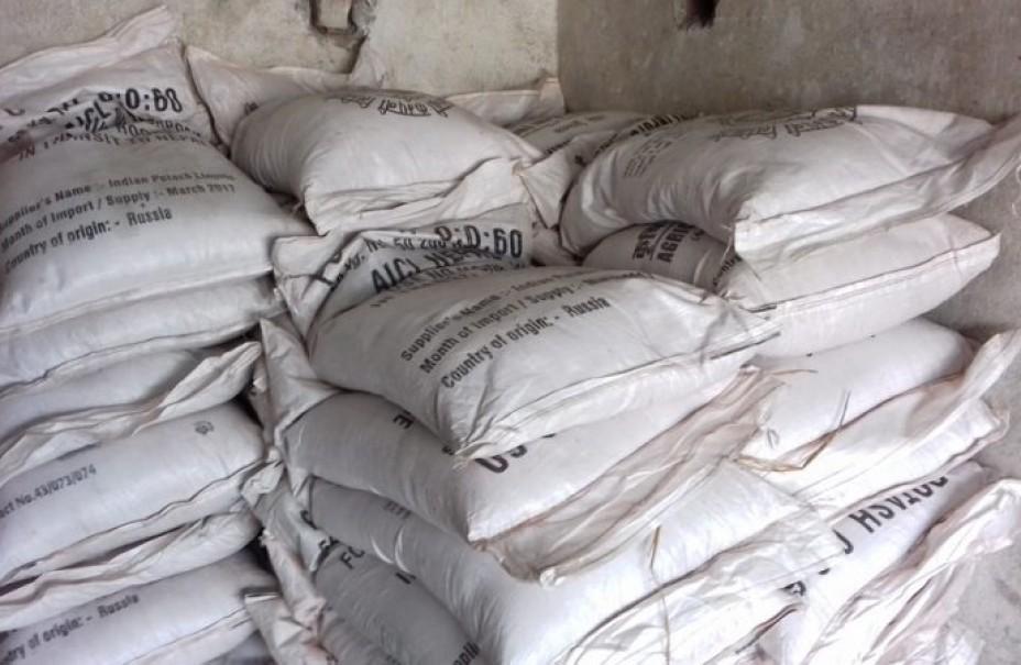 हिउँदे खेतीको लागि कैलालीमा रासायनिक मलको चर्को अभाव