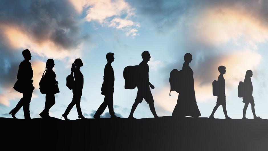 महामारीका कारण विश्वमा आप्रवासनको संख्या घट्यो