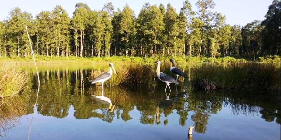 यी हुन् पर्यटकीय गन्तव्यको सूचीमा परेका झापाका १० नयाँ स्थान