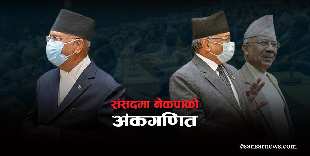 संसदमा नेकपाको अंकगणित, ओली समूह बलियो कि प्रचण्ड–नेपाल समूह ?